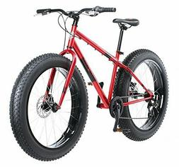 dolomite wheel fat tire bicycle