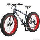 dolomite fat tire mountain bike