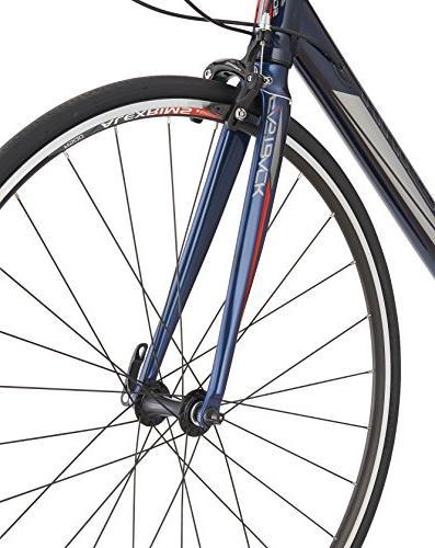 Schwinn Bike, Blue