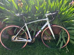 Giant/Liv Avail Inspire road bike, Medium 2013 NEW