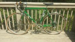 Takara Model 732 10 Speed Barn Find/ Vintage 1975 Japanese R