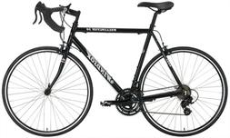 Windsor Wellington 2.0 Aluminum 21 Speed Shimano Equipped Ro